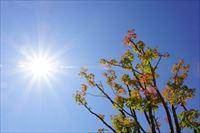 秋暑の候の時期