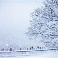 大寒の候はいつからいつまで使える?意味と例文を簡単解説!