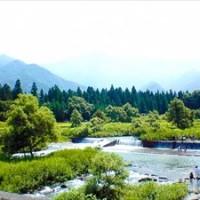 川遊び山遊び!親子で超絶楽しいおすすめスポット3選・東海編