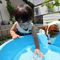 子供の水遊びグッズを手作りで!簡単で大はしゃぎ!の3つのアイデア