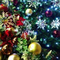 老人ホームのクリスマス会|心温まる会になる3つの秘訣