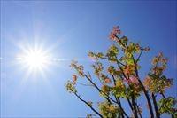 秋暑の候、いつからいつまで使える?